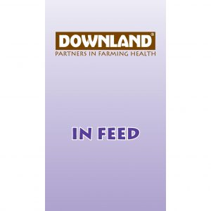 Downland Infeed Intensive Beef – Maunders Farm & Country