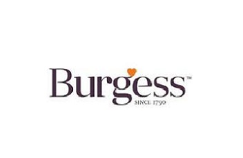 Burgess Dog